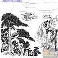 2010.4.3迎客松-白描图-众木成林-yks003-迎客松国画白描