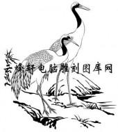 白描仙鹤-矢量图-骖鸾驭鹤-8-仙鹤国画矢量