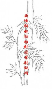 梅兰竹菊-白描图-竹子-mlxj045-梅兰竹菊线描图