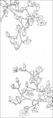 竖板16,玉兰花