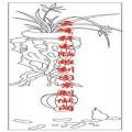 梅兰竹菊-矢量图-兰草 南瓜-mlxj007-国画梅兰竹菊