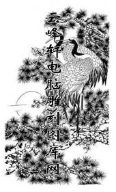 白描仙鹤-矢量图-松鹤延年-16-电子版仙鹤