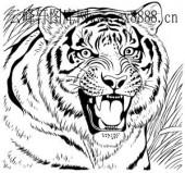 虎第四版-矢量图-虎啸-6-电子版虎