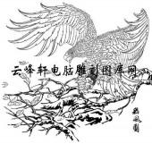 名家画鹰-矢量图-5舞风图-鹰雕刻图