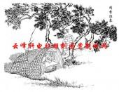 二十四孝-矢量图-16闻雷泣墓-国画二十四孝图案