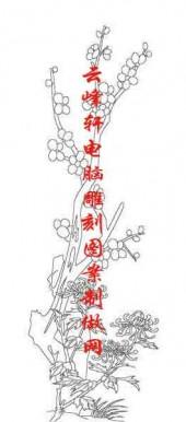 梅兰竹菊-白描图-梅花 菊花-mlxj009-梅兰竹菊雕刻图案