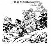 虎第五版-矢量图-投畀豺虎-34-虎全图