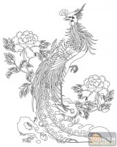 凤-白描图-雏凤清声-huangf032-凤图案