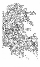 工笔牡丹精选画集-矢量图-6独冠群芳-牡丹路径图