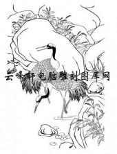 白描仙鹤-矢量图-闲云野鹤-5-仙鹤雕刻图片
