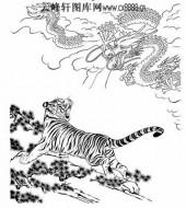 虎第五版-白描图-龙腾虎跃-46-老虎雕刻图片