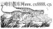虎第四版-矢量图-双虎-10-电子版虎