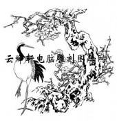 白描仙鹤-矢量图-梅枝仙鹤-31-仙鹤矢量图